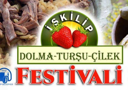 İskilip Dolma, Turşu ve Çilek Festivali